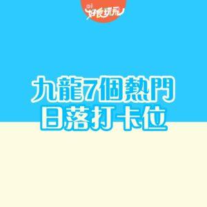 新田魚塘變身菠蘿包!元朗一日遊4大打卡點 百合花海/藤原豆腐店 - 元朗屋網 28YuenLong.com